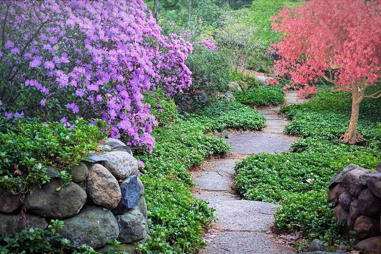 ممر بين الحديقة