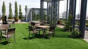 زراعة أسطح المنازل